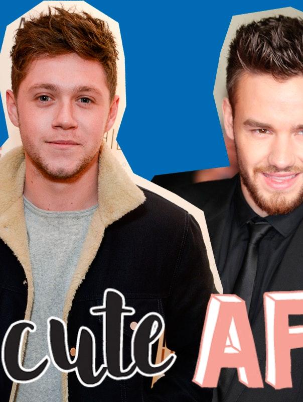 Niall Horan om Liam Paynes baby