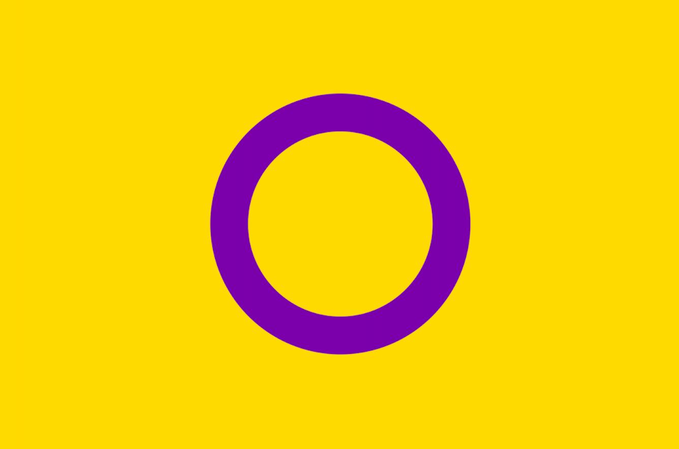 Hvad betyder de forskellige Pride-flag?   Vi Unge